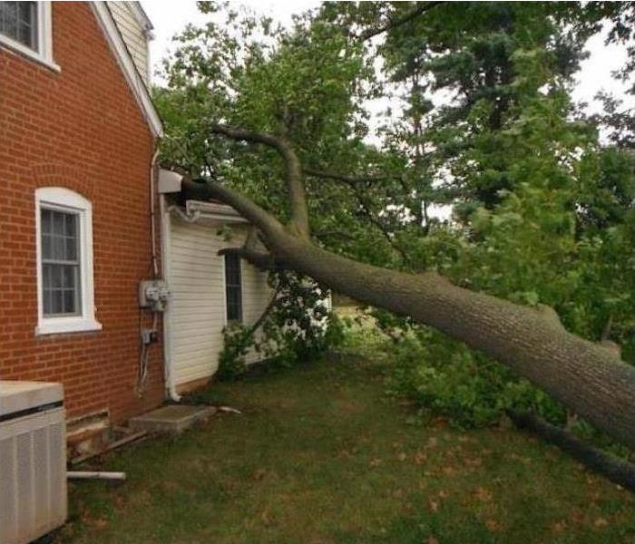 tree trunk and limbs crashed into the roof of the back section of a house, broken gutters