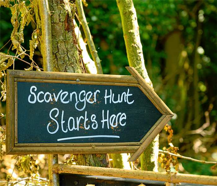a sign on a tree saying scavenger hunt starts here